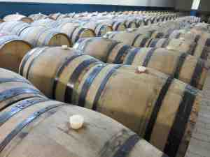 Oak Barrels with wine for champagne